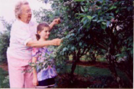 Wilma Sprinkle shows granddaughter Abby Forcum the crop of ripe blueberries ready for picking